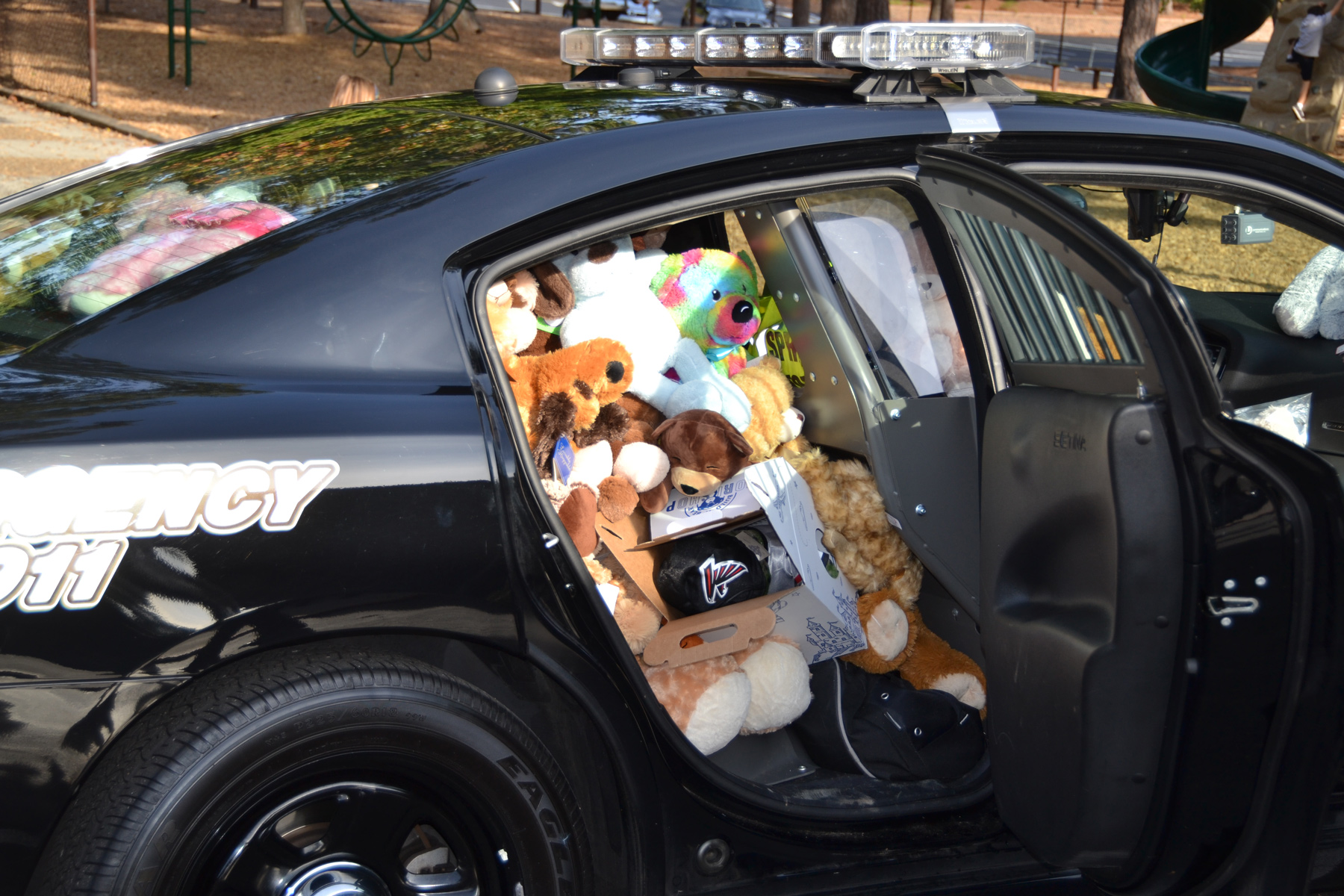 Brandon-Bear-car